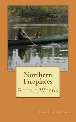 Northern Fireplaces Laura Diamond-C