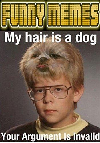 Memes: Funny Memes Terrific Fun LOL  by  Memes