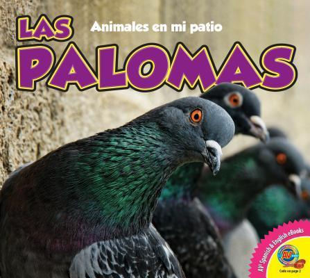 Las Palomas  by  Aaron Carr