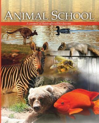 Animal School  by  Melody Spier