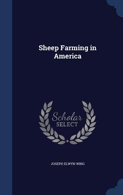 Sheep Farming in America Joseph Elwyn Wing