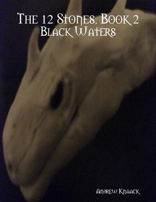 The 12 Stones, Book 2: Black Waters Andrew Knaack