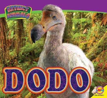 Dodo  by  Aaron Carr