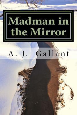 Madman in the Mirror A J Gallant