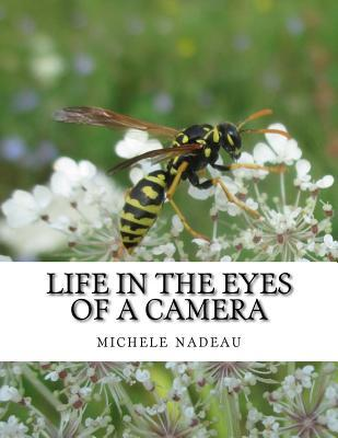 Life in the Eyes of a Camera: No One Is Perfect  by  michele nadeau