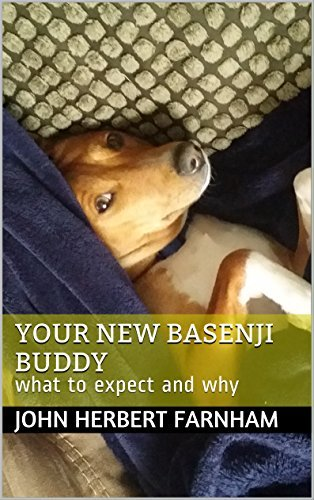 Your New Basenji Buddy: what to expect and why  by  John Herbert Farnham