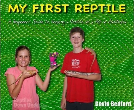 My First Reptile: An Beginners Guide to Keeping a Reptile as a Pet in Australia  by  Gavin Bedford