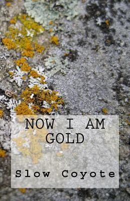 Now I Am Gold  by  Slow Coyote