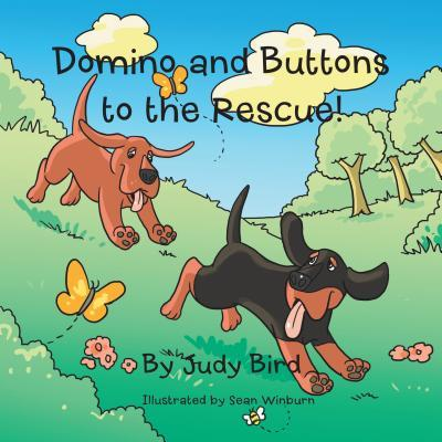 Domino and Buttons to the Rescue! Judy Bird