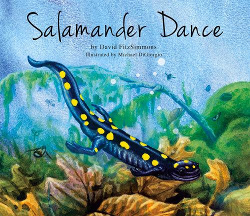 Salamander Dance David Fitzsimmons