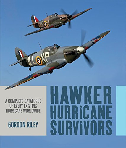 Hawker Hurricane Survivors  by  Gordon Riley