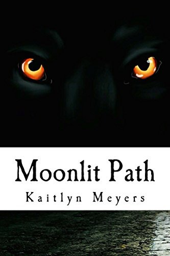 Moonlit Path  by  Kaitlyn Meyers