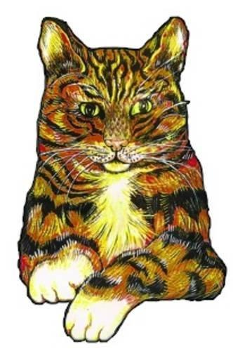 Surtsey the Cat Hilary Roper