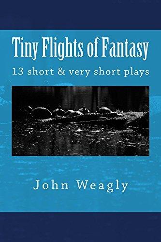 Tiny Flights of Fantasy John Weagly
