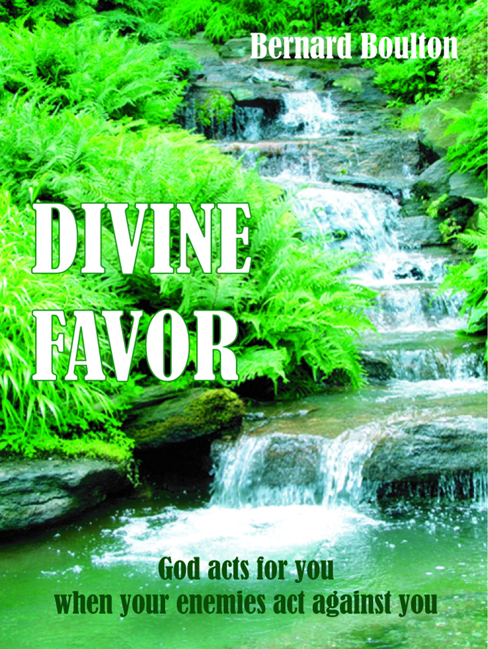 Divine Favor: God Acts for You When Your Enemies Act Against You  by  Bernard Boulton