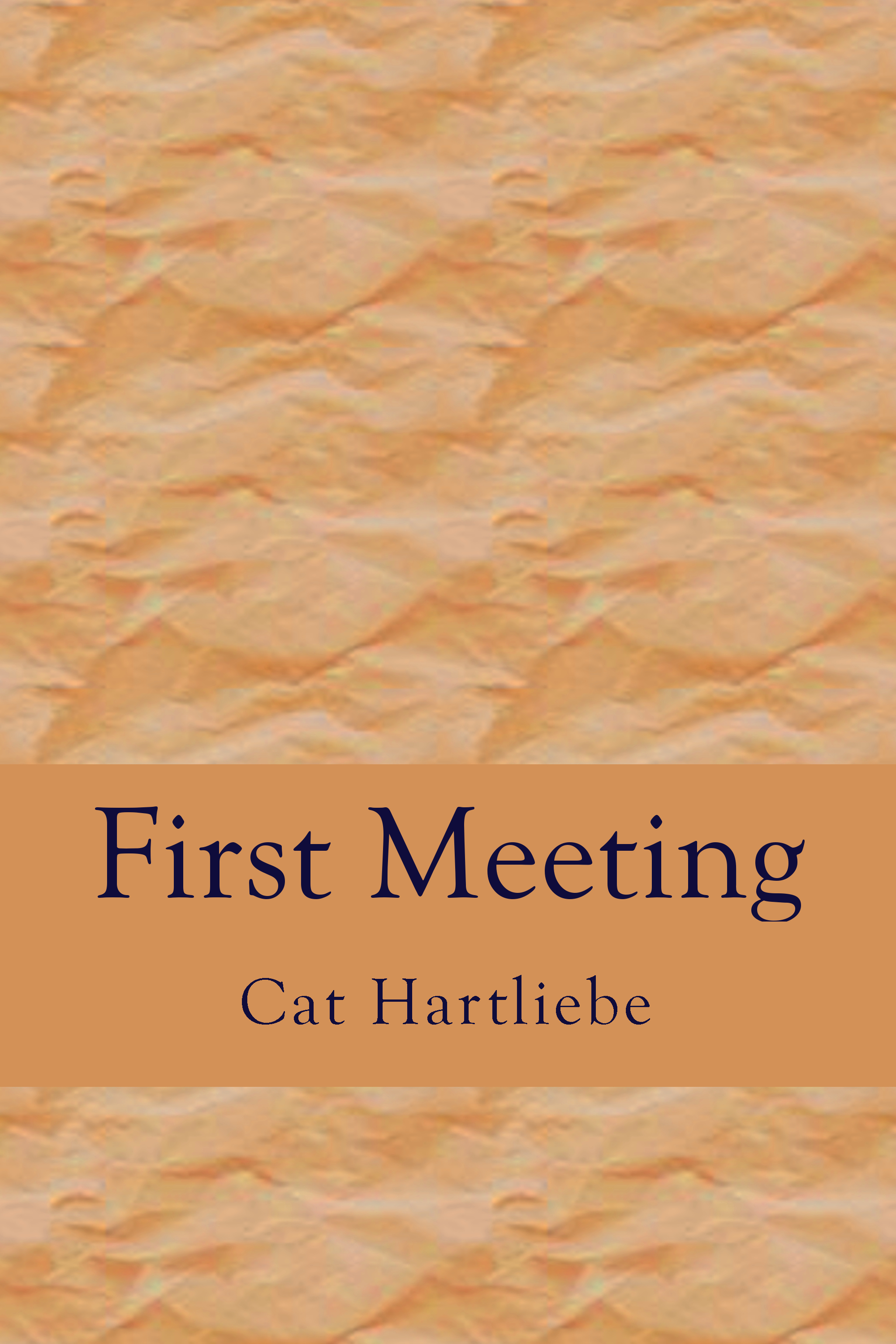 First Meeting  by  Cat Hartliebe