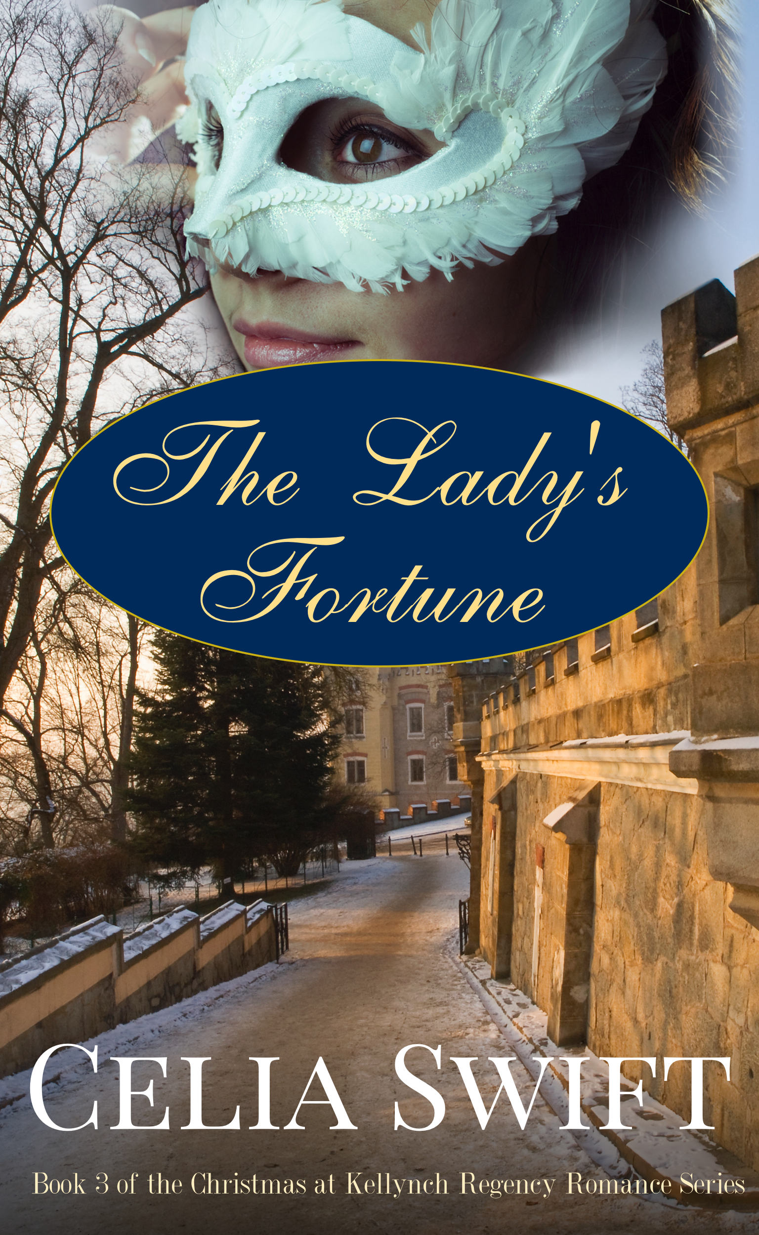 The Ladys Fortune  by  Celia Swift