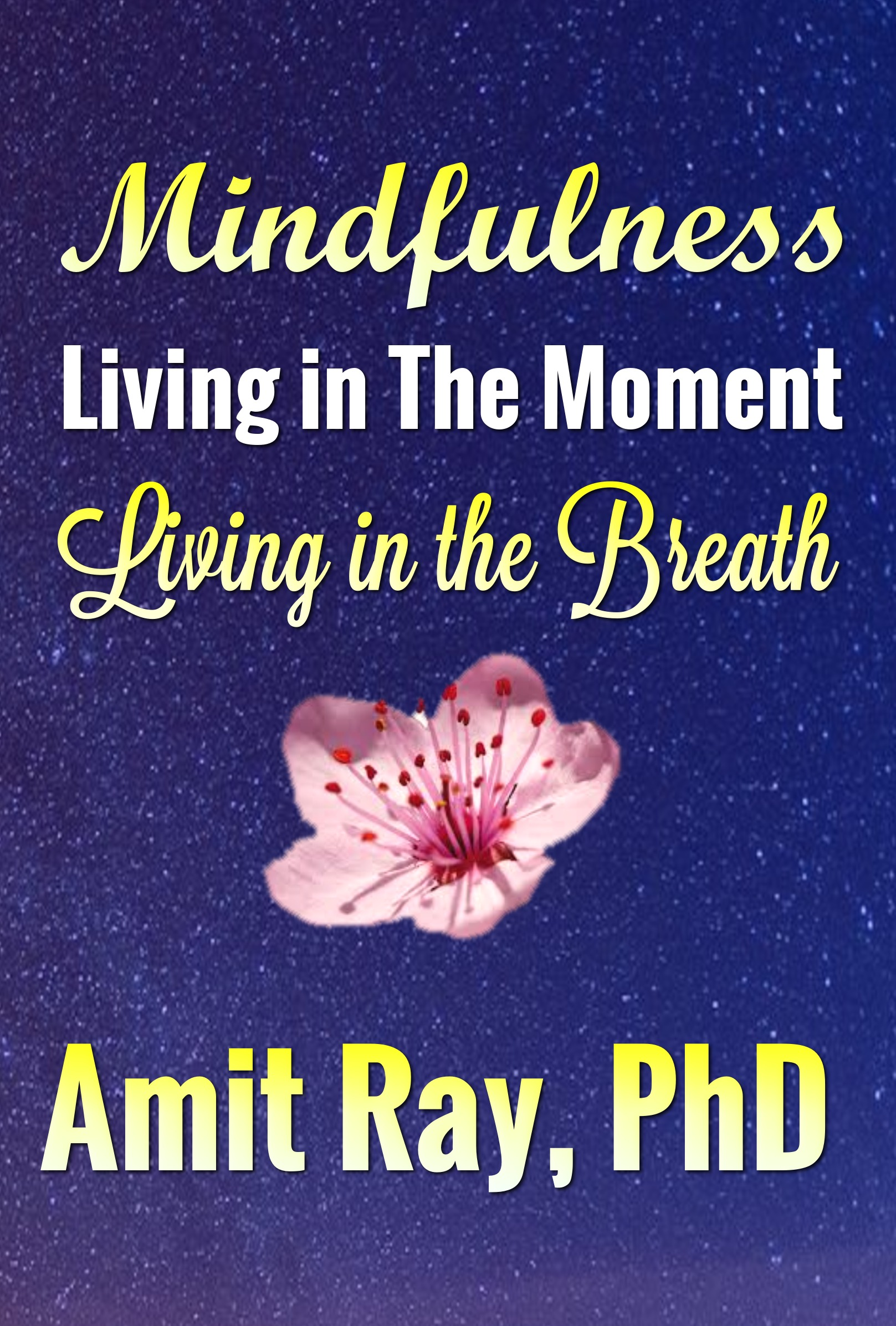 Mindfulness : Living in the Moment - Living in the Breath Amit Ray