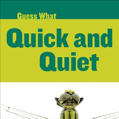 Quick and Quiet: Dragonfly  by  Felicia Macheske