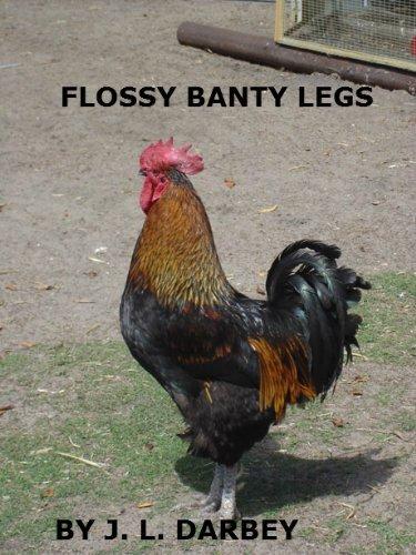 Flossy Banty Legs Janet Darbey