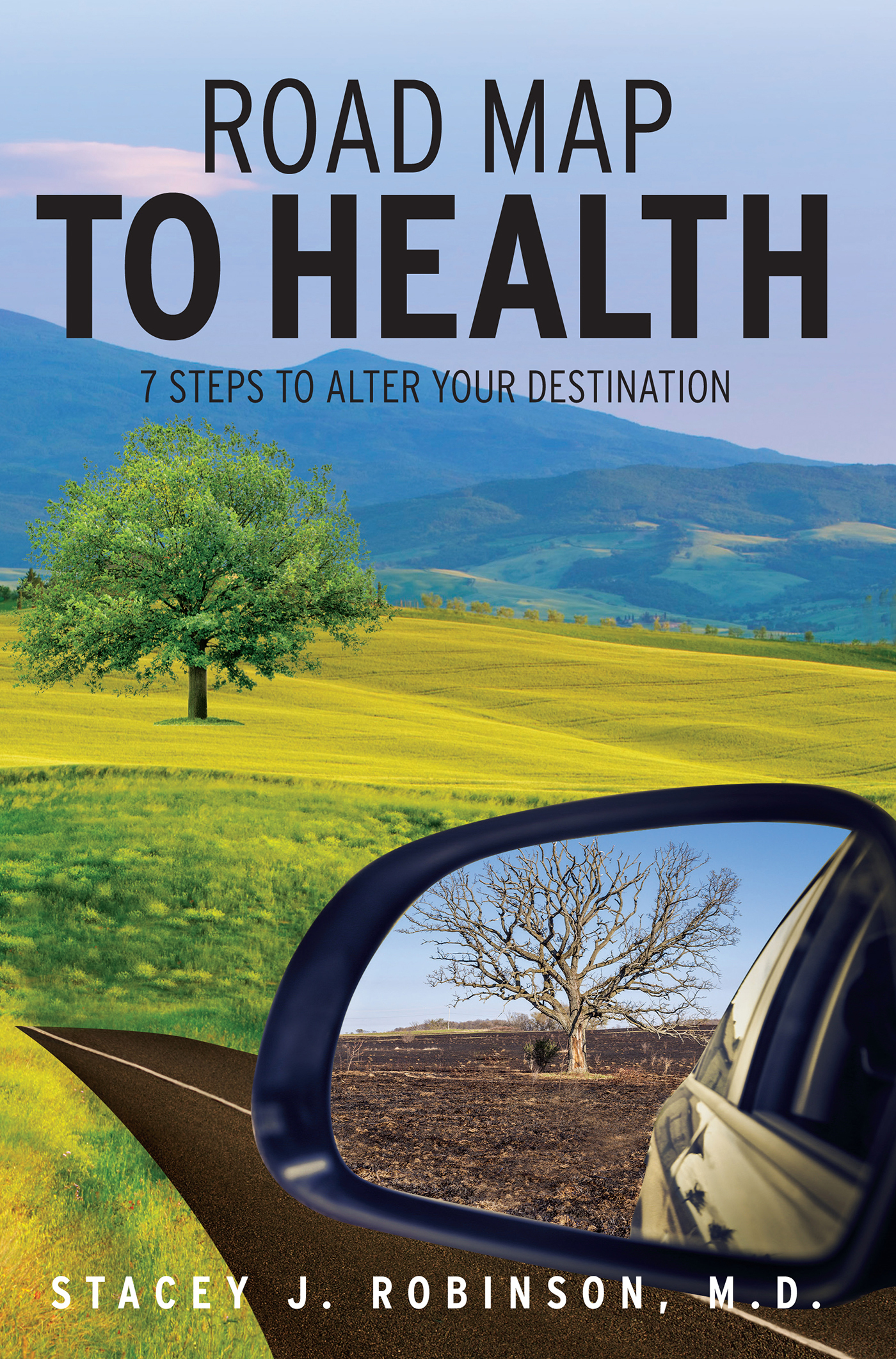 Road Map to Health: 7 Steps to Alter Your Destination  by  Stacey J Robinson