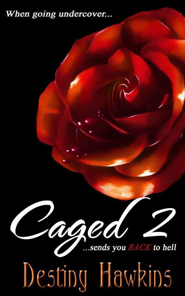 Caged 2  by  Destiny Hawkins