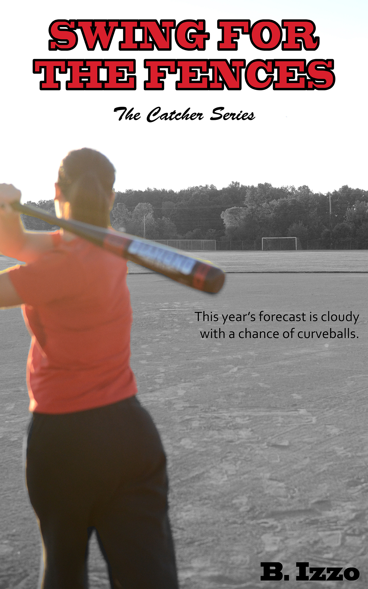 Swing For the Fences (The Catcher Series #2)  by  Bri Izzo