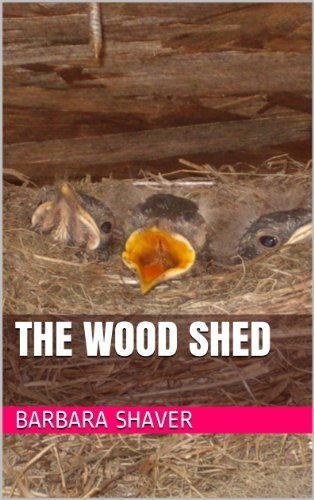 The Wood Shed  by  Barbara Shaver