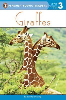 Giraffes Jennifer Dussling