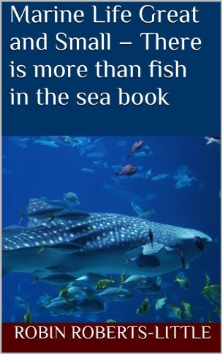 Marine Life Great and Small - There is more than fish in the sea book Robin Roberts-Little