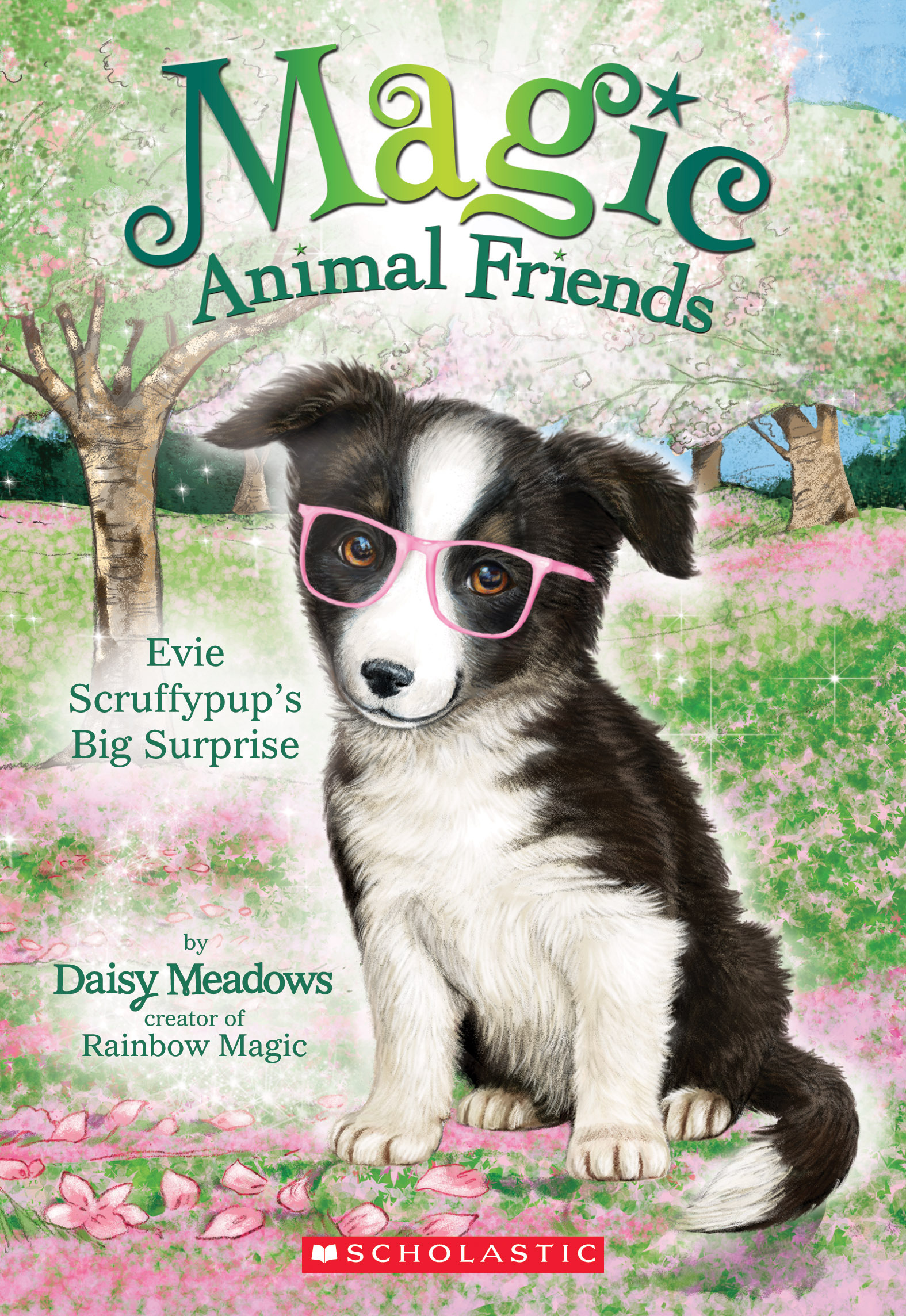 Evie Scruffypups Big Surprise (Magic Animal Friends #10) Daisy Meadows