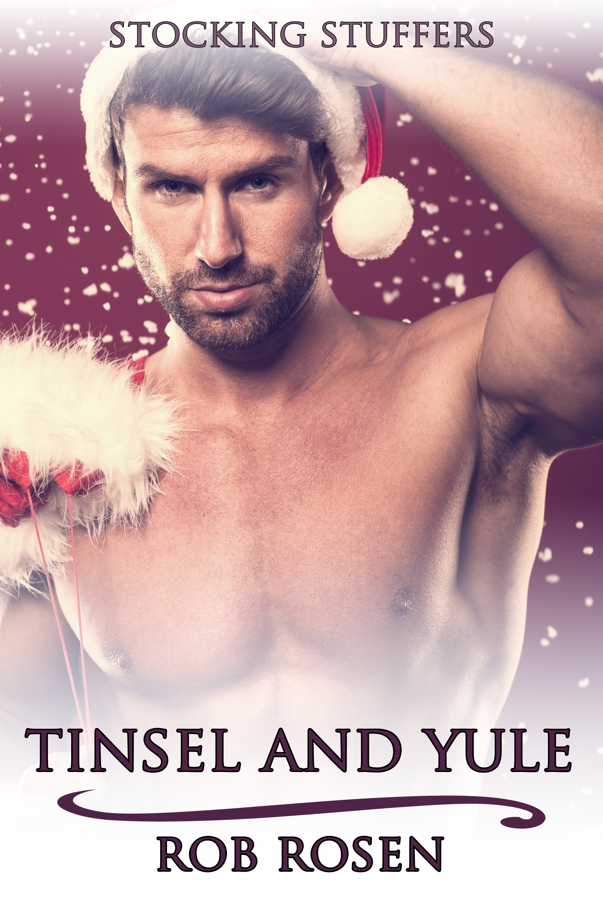 Tinsel and Yule  by  Rob Rosen