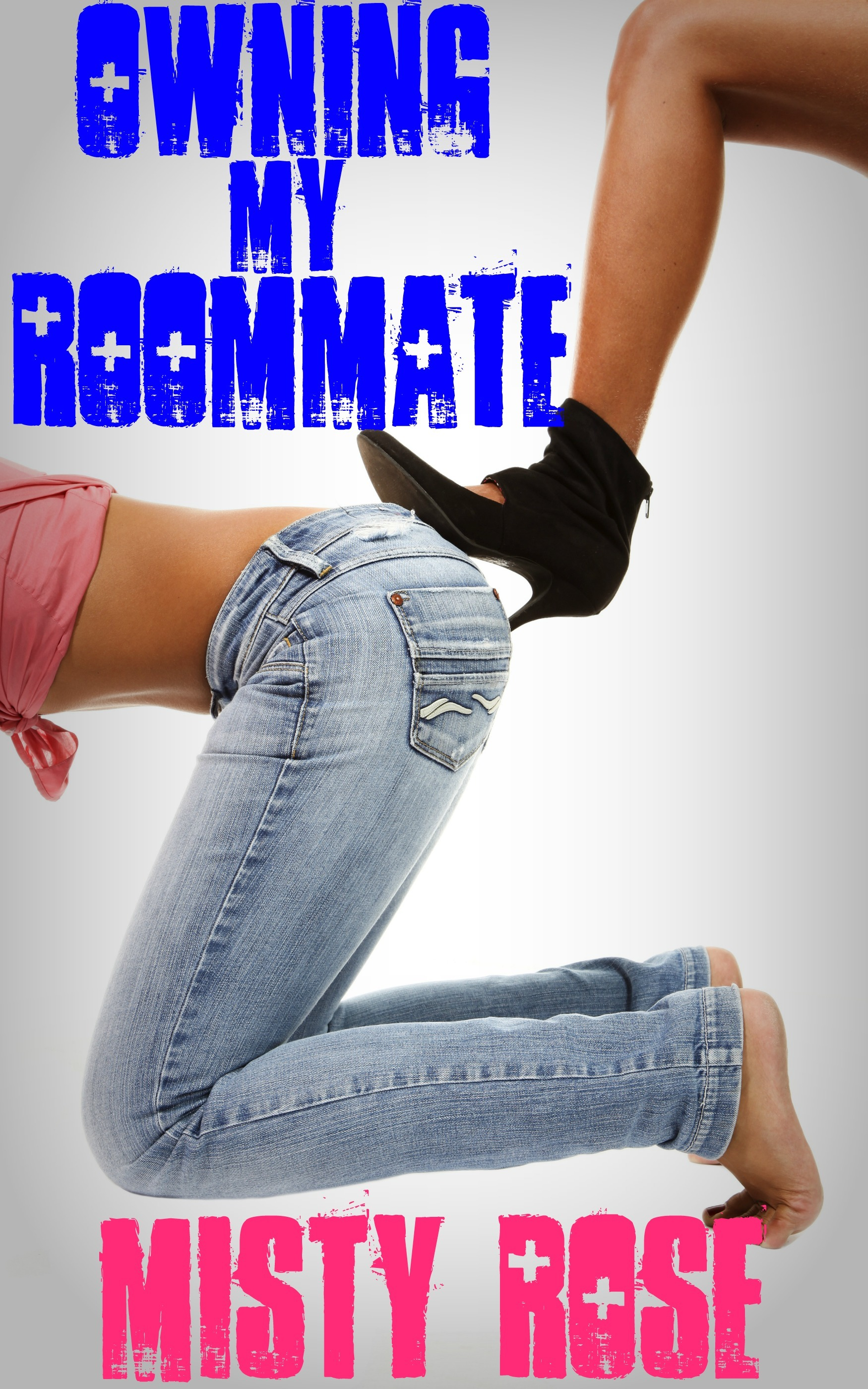 Owning My Roommate  by  Misty Rose
