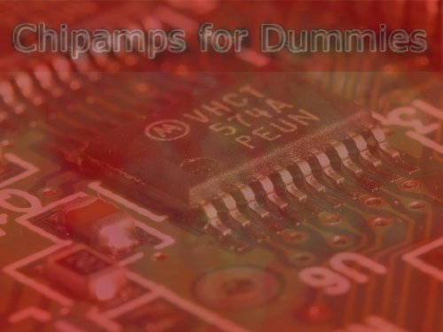 Chipamps for dummies.  by  Arturs Spade
