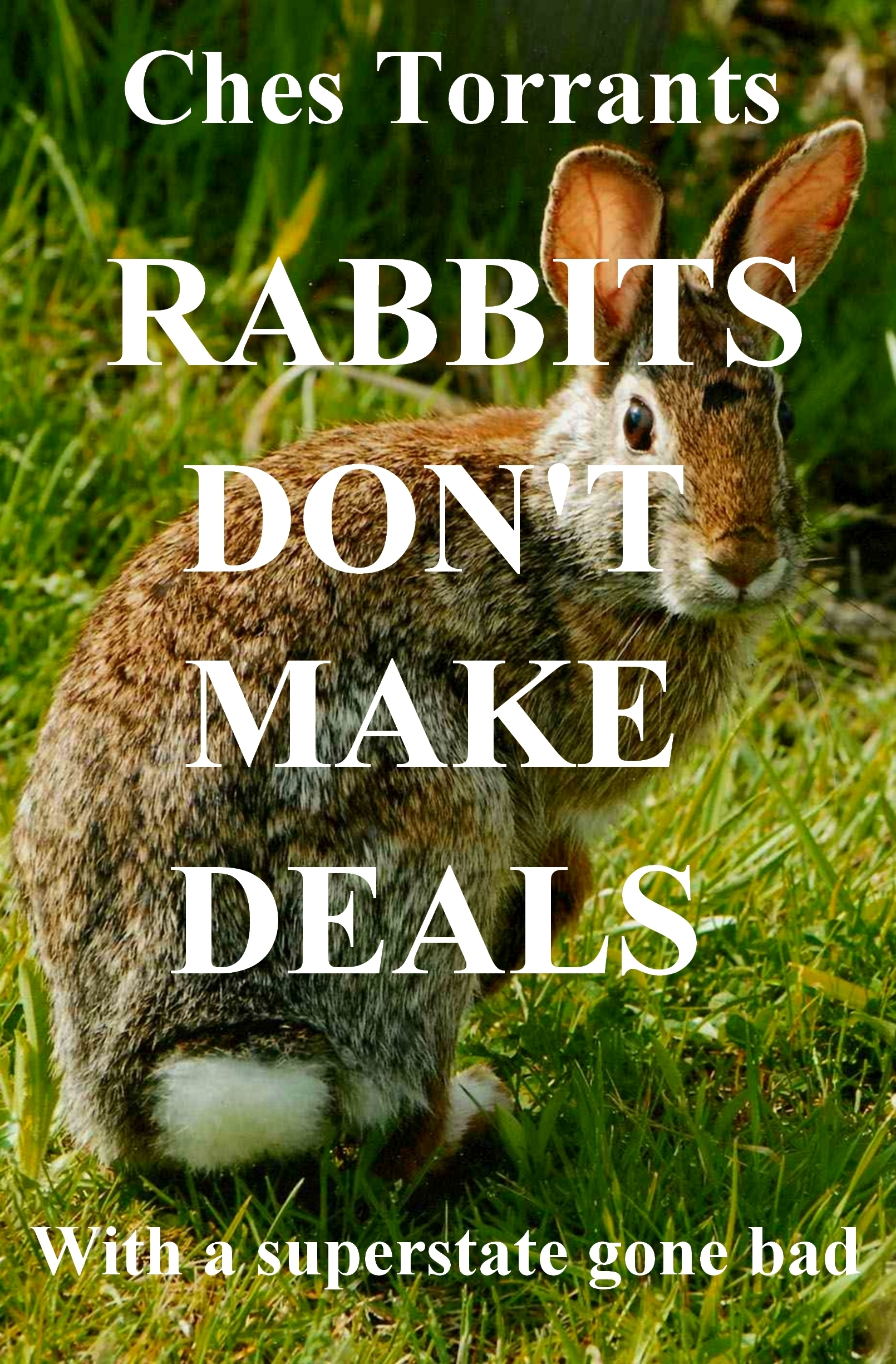 Rabbits Dont Make Deals Ches Torrants