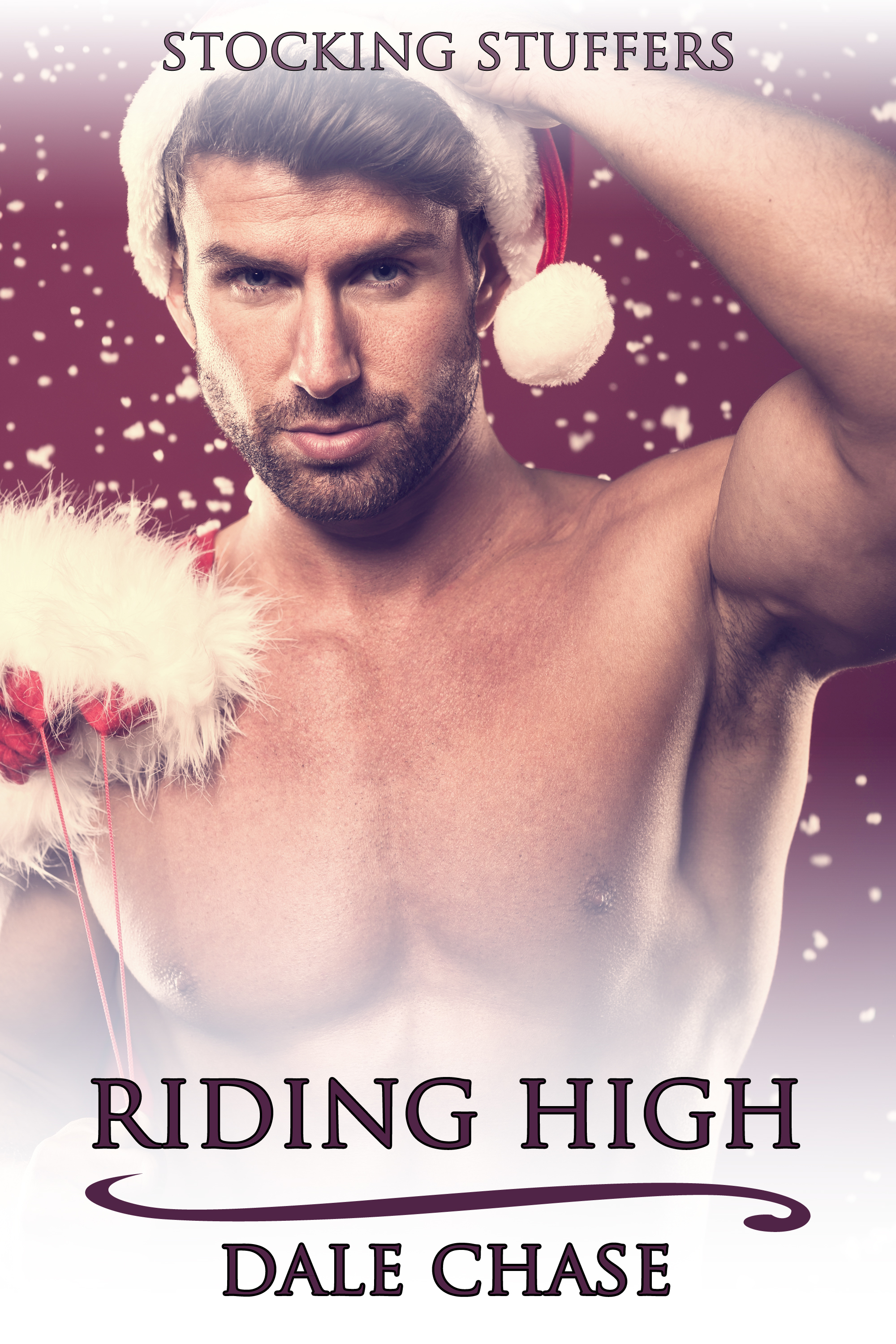 Riding High  by  Dale Chase