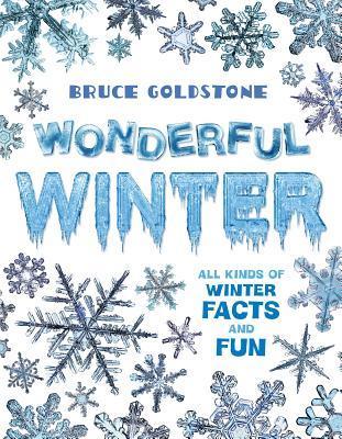 Wonderful Winter Bruce Goldstone