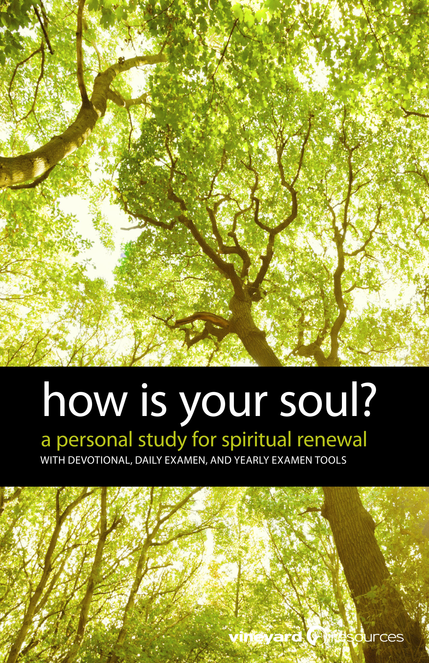 How Is Your Soul?: A Personal Study for Spiritual Renewal Vineyard Resources