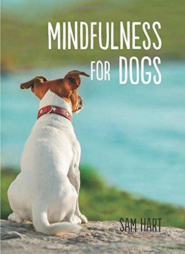 Mindfulness for Dogs Sam Hart