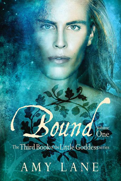 Bound, Vol. 1 (Little Goddess, #3)  by  Amy Lane