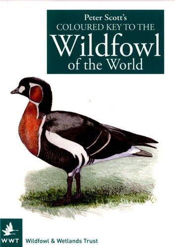 Peter Scotts Coloured Key to the Wildfowl of the World  by  Peter Scott