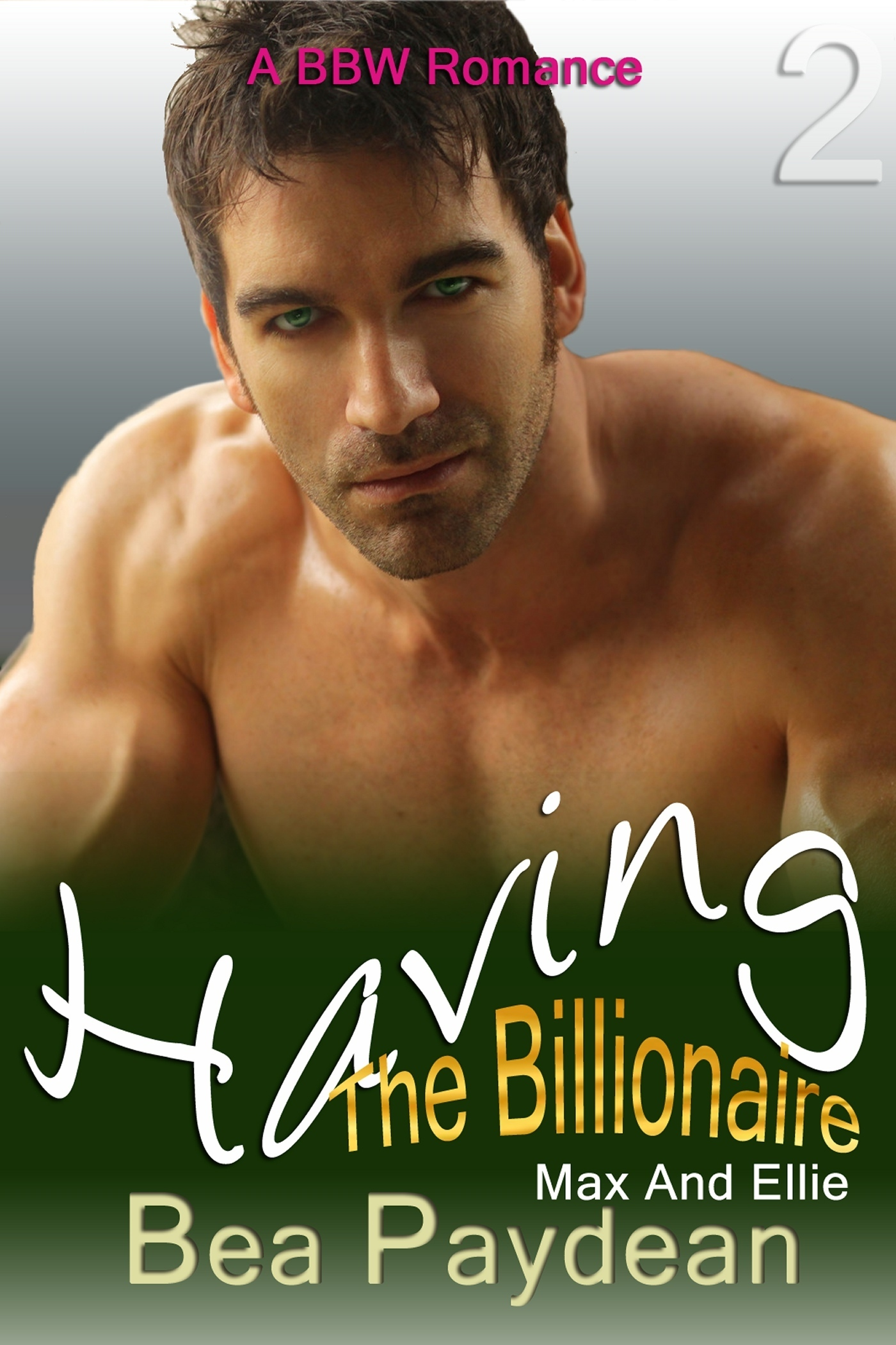 Having The Billionaire (A BBW Romance) (Max And Ellie #2)  by  Bea Paydean
