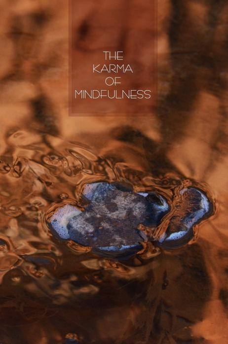 The Karma of Mindfulness: The Buddha's Teachings on Sati and Kamma Thanissaro Bhikkhu