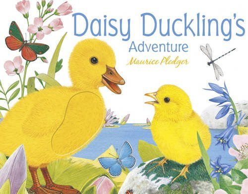 Daisy Ducklings Adventure  by  Maurice Pledger