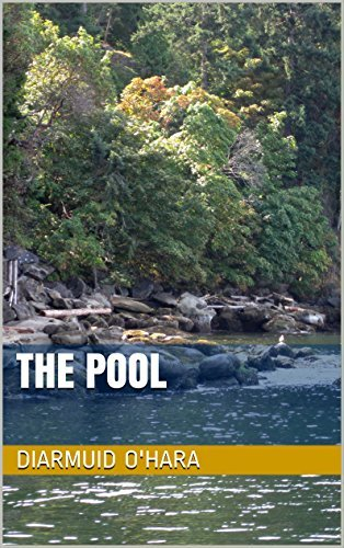 The Pool  by  Diarmuid H. OHara