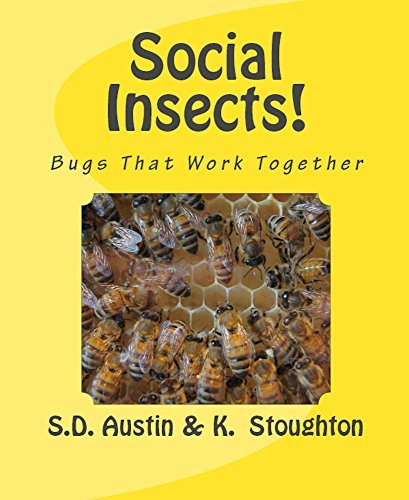 Social Insects!: Bugs That Work Together  by  K. Stoughton