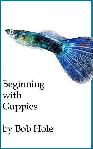 Beginning with Guppies Bob Hole