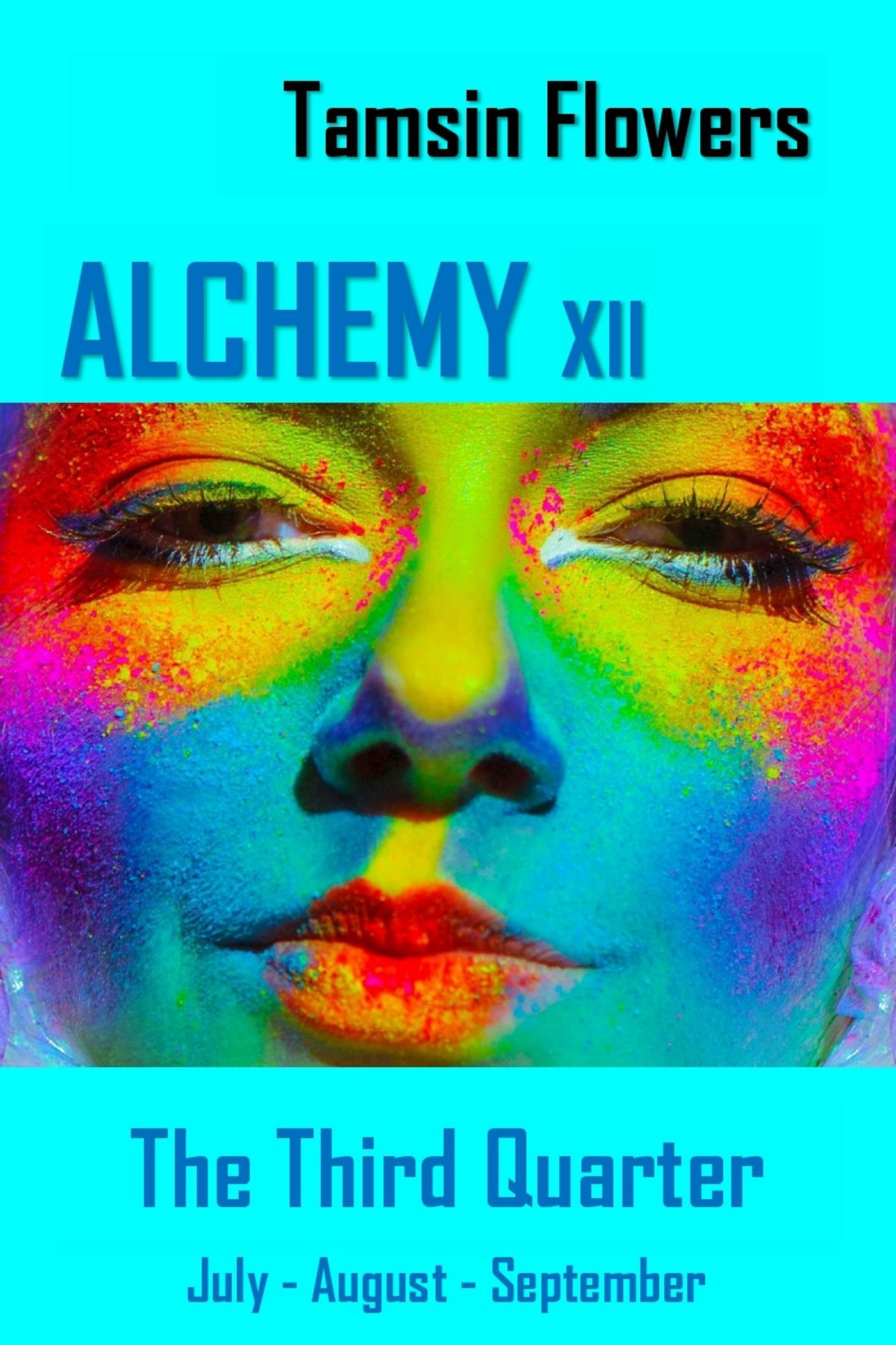 Alchemy xii: The Third Quarter: July - August - September  by  Tamsin Flowers