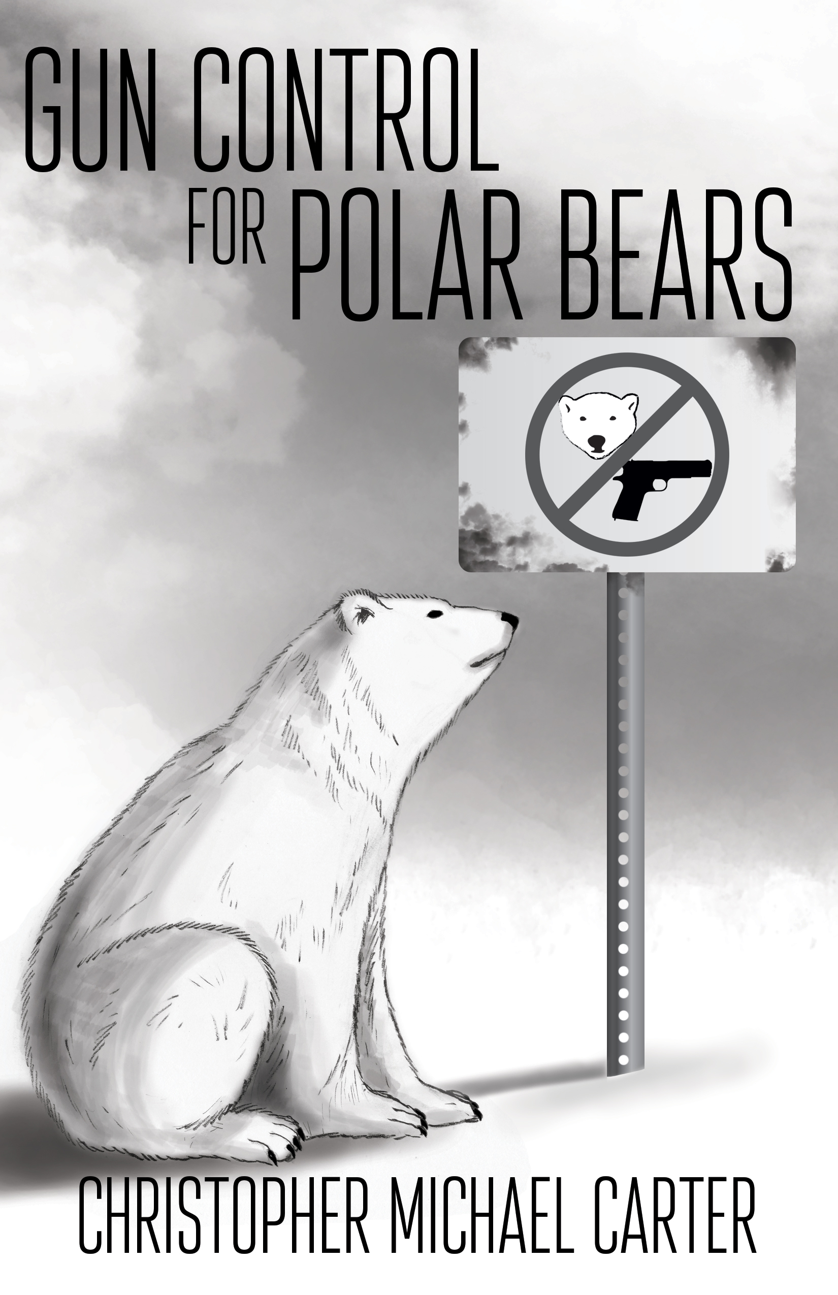 Gun Control for Polar Bears  by  Christoph Michael Carter