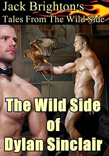The Wild Side of Dylan Sinclair  by  Jack Brighton